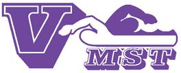 VMST_logo